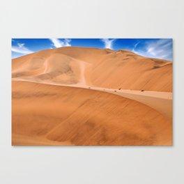 The Namib Desert, Namibia Canvas Print
