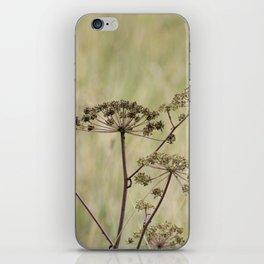 Drying iPhone Skin