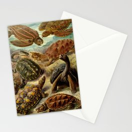 Sea Turtle Collage-Ernst Haeckel Stationery Cards