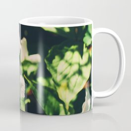 Lily blooming Coffee Mug