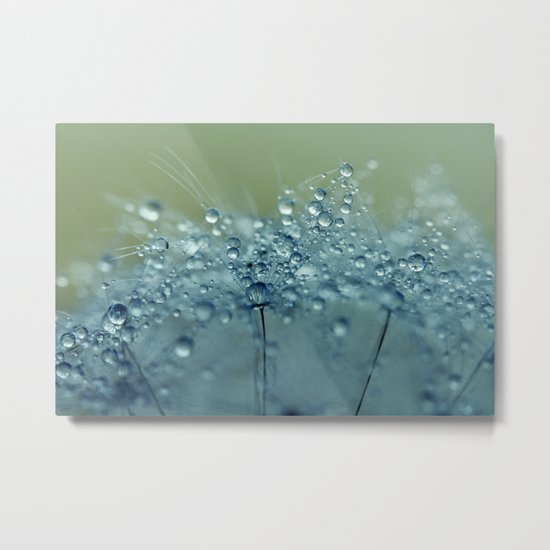 Dandelion Drops in Blue Metal Print