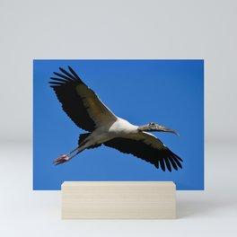 Wood Stork in Flight Mini Art Print