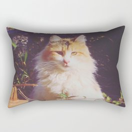 Staring Stranger Rectangular Pillow