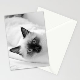 Black and white cat lying on the couch v.1 Stationery Cards