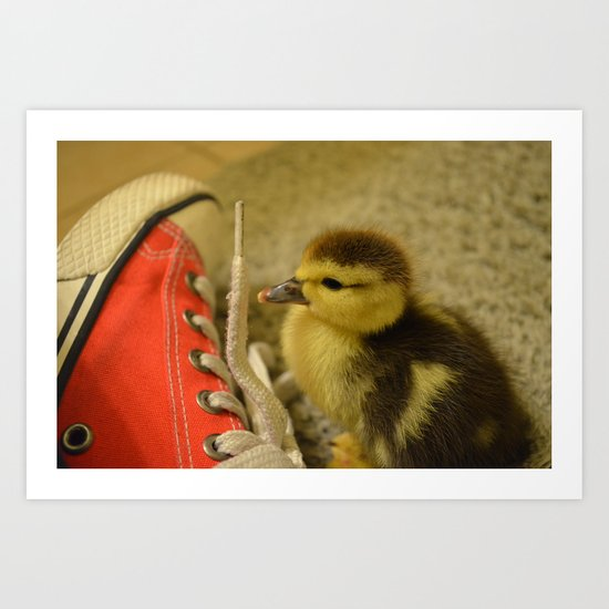 Ducky and the Shoe Art Print