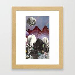 Foraging Framed Art Print