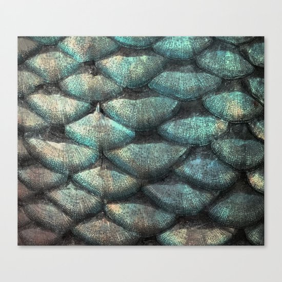 Aqua rose mermaid scales Canvas Print