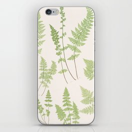 Ferns #1 iPhone Skin