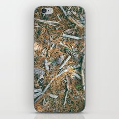 Forest Floor iPhone & iPod Skin