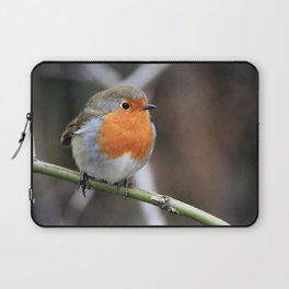 Robin Redbreast Laptop Sleeve