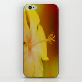 An Afterthought iPhone Skin