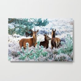 Unicorn Deer #society6 #decor #buyart Metal Print