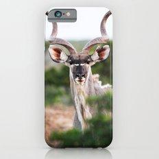 Kudu Slim Case iPhone 6s