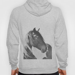 Stallion in black and white Hoody