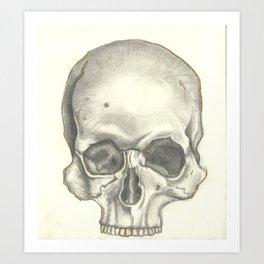 Vintage Skull - Black and White Drawing Art Print