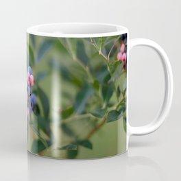Summer Blueberries Coffee Mug