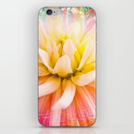A summer Dahlia flower on vivid background iPhone Skin