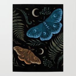 Moths and Ferns Poster