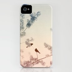 Central Park In Bloom #4 iPhone (4, 4s) Slim Case