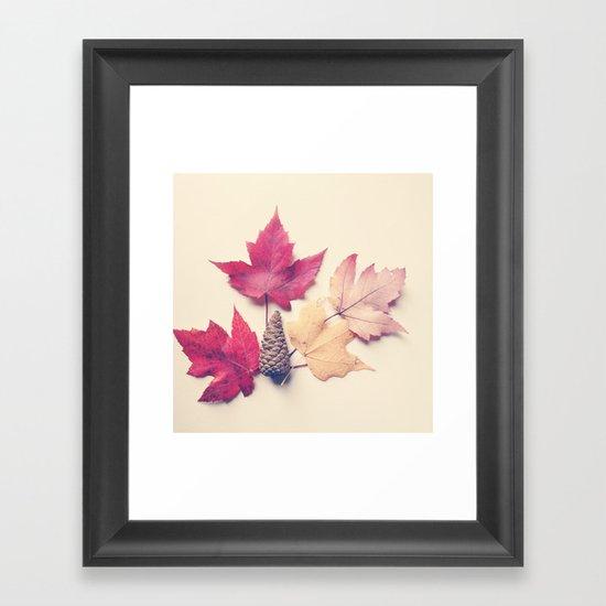 Red Maple Leaf Collection Framed Art Print