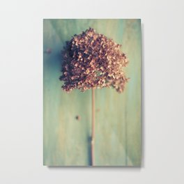 Autumnal Light no.2 Metal Print