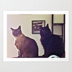 Statue Cats... Art Print