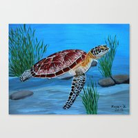 sea turtle Canvas Prints featuring Sea turtle  by maggs326