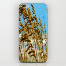 Beyond the Sea Grass lies Eternity iPhone & iPod Skin