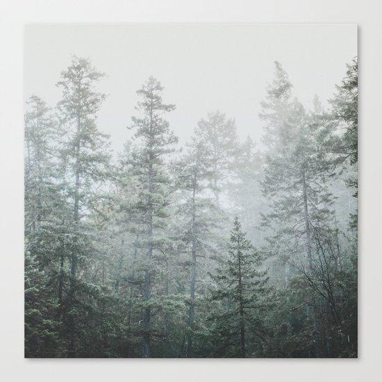 Deep Forest II Canvas Print