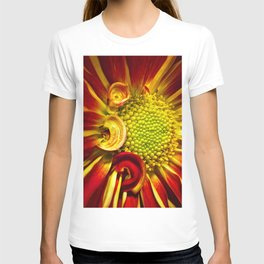 Gerbera Daisy 3 T-shirt