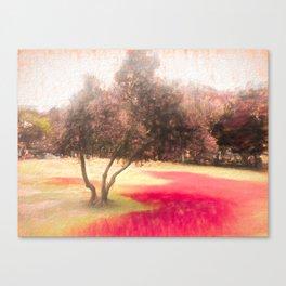 The Raanana Park 1 Canvas Print