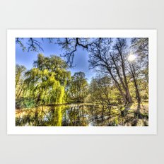 The Willow Tree Pond Art Print