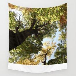 Fall Canopy - Woodland Trees Wall Tapestry