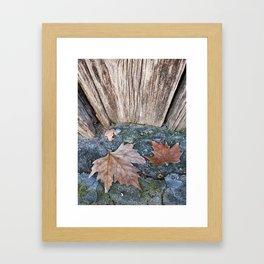002 Framed Art Print