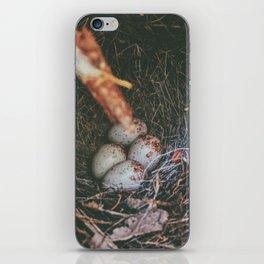 Hidden Gems • Appalachian Trail iPhone Skin