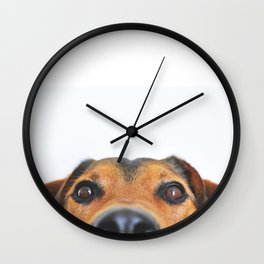 Dog looking at you Wall Clock