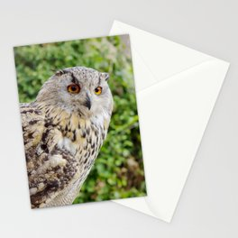 Eagle Owl with glowing eyes Stationery Cards