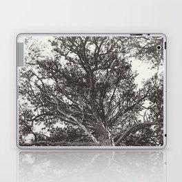 Growth | Estes Park, Colorado Laptop & iPad Skin