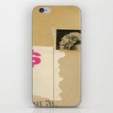 top dollar iPhone & iPod Skin