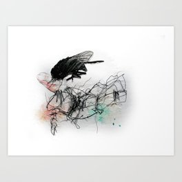 Fly Head Art Print