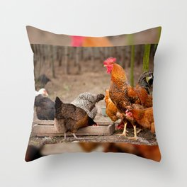 Rhode Island Red chickens eating Throw Pillow