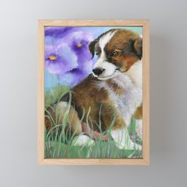 Baby Pictures Sheltie Puppy Framed Mini Art Print