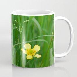 Flowers Izby Garden 5 Coffee Mug