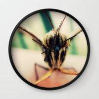 moth Wall Clocks featuring moth by Sookie Endo