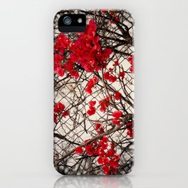 Fenced in Beauty iPhone Case