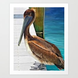 Dockside Pelican by Barbara Chichester Paintographer Art Print