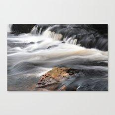 Running Stream Canvas Print