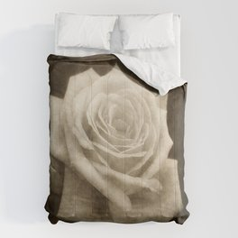 Pink Roses in Anzures 4 Antiqued Comforters