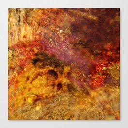 Dehiscence 12 Canvas Print