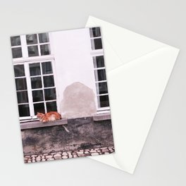 Cat with window I Vintage building I Lier, Belgium I Street photography Stationery Cards